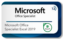 Microsoft office specialist excel 2019